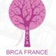 BRCA 2018