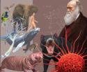 Affiche JLH 2019 Darwin