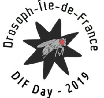 DIF Day 2019