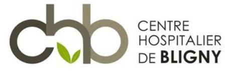 Logo CHU Bligny